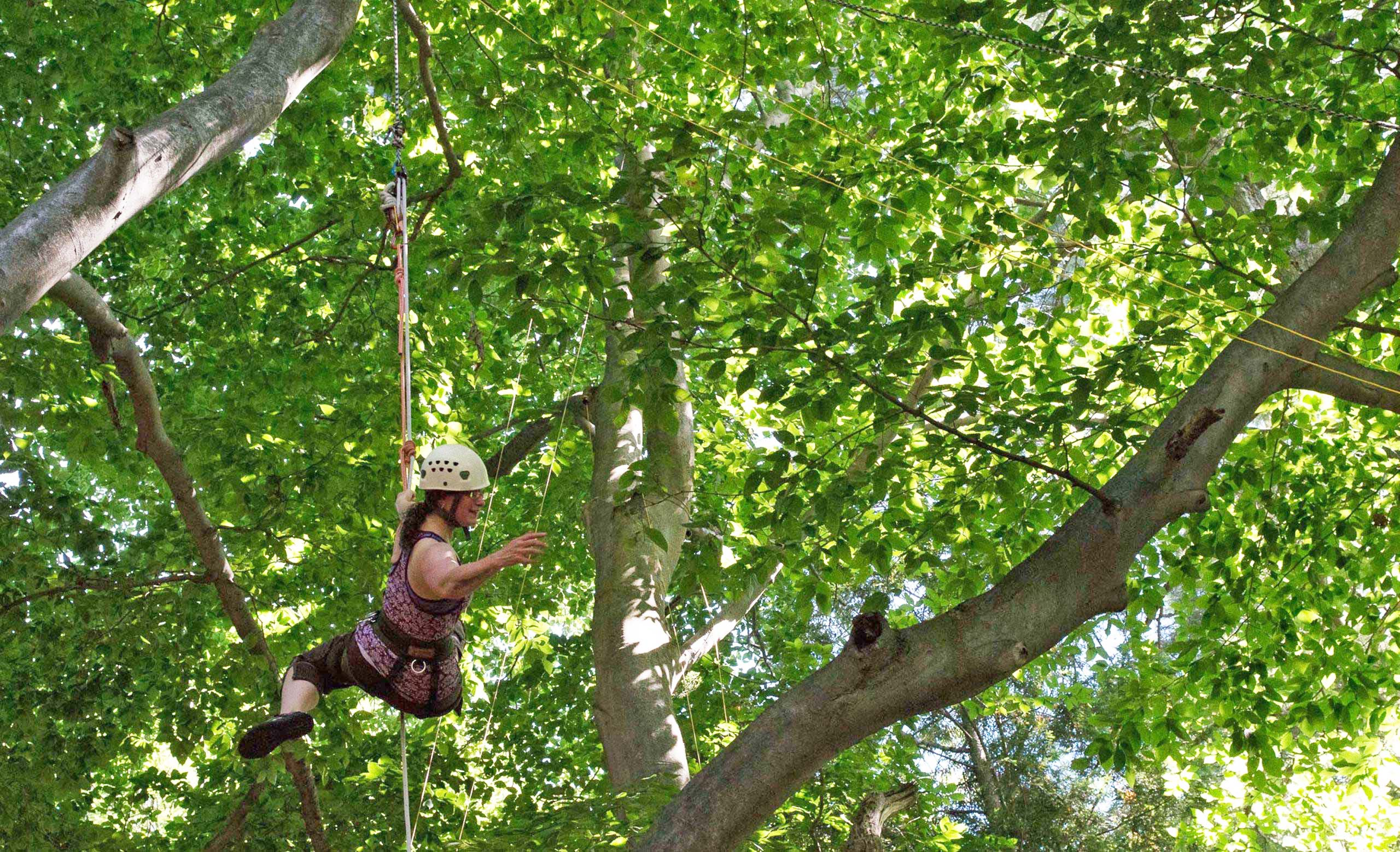 A camper climbing trees with ropes